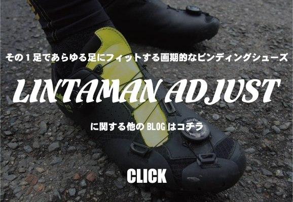 LINTAMAN