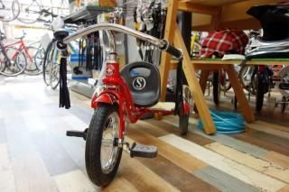 Roadstar Trike (2)