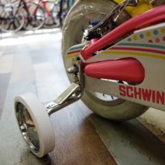 Schwinn Pixie (4)